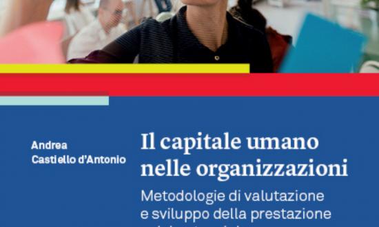 Il capitale umano nelle organizzazioni. Metodologie di valutazione e sviluppo della prestazione e del potenziale